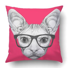 cat portraits NZ - Throw Pillow Case for Bedroom Couch Home Portrait of Sphynx Cat with glasses Square Inches Funny Cat