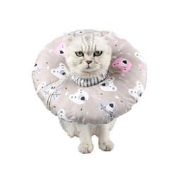 $enCountryForm.capitalKeyWord Australia - Cat Elizabeth Circle Protective For Neck Pet Wound Healing Collar Healthy Sterilization Shield Q190525