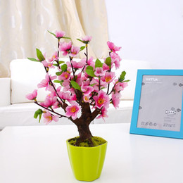 $enCountryForm.capitalKeyWord NZ - 20 pcs bag Weeping Sakura Seeds, cherry blossom seeds, beautiful small sakura bonsai pot plant tree flower seeds for home garden