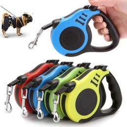 Chinese  3m 5m Mini Retractable Dog Pet Lead with Extending Leash Tape Nylon Rope Long Lead Dog Mountain Climbing Rope manufacturers
