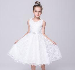 $enCountryForm.capitalKeyWord Australia - AiLe Rabbit Baby girl Princess dress girls summer party dress kids wedding dresses christmas gift free shipping