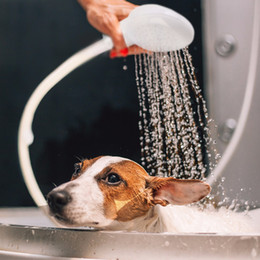 hose bath NZ - New Pet Dog Cat Shower Head Multi-functional Tap Faucet Spray Drains Strainer Hose Sink Washing Hair Pets Lave Water Bath Heads