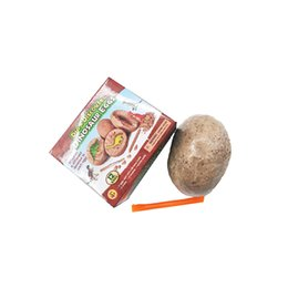 Novelty DIY Archaeological Excavation Model Digging Dinosaur Eggs Toy Kids Science Education Develop Intelligence Operational Ability on Sale