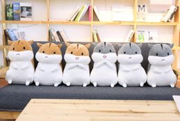 cartoon make toys NZ - Cat Stuffed Animal Collectible Plush Toys PillowLuminous Cute Pillow Light pillow cute plush toy doll luminous star plush Pillow Hot Colorfu