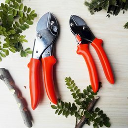 $enCountryForm.capitalKeyWord Australia - shears garden East Garden Tools Ratchet Carbon Steel Pruning Shear Gardening Tree Flower Labor-saving Pruner Cutting Tool