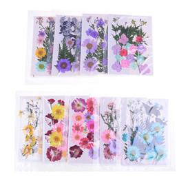 $enCountryForm.capitalKeyWord NZ - Multiple Beautiful Real Pressed Flower Dried Flowers For Art Craft Scrapbooking Resin Jewelry Craft Making Phone Case