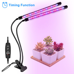 $enCountryForm.capitalKeyWord Australia - LED Full Spectrum grow light 30w led grow lamp bulbs plant lights auto on&off with 3 9 12H Timer