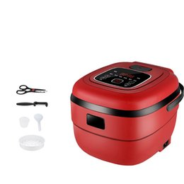 $enCountryForm.capitalKeyWord UK - DMWD 2.5L Intelligent Electric Rice Cooker 220V Mini Food Steamer Yogurt Machine Cake Maker For 1-4 People 24H Appointment