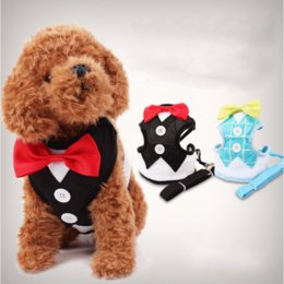 $enCountryForm.capitalKeyWord NZ - Fashion Dog Harness & Leash Pet Leads for Small Dogs Puppy Dog Harness Vest with Bow Tie Party & Wedding Formal Tuxedo Costume