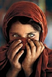 Portrait Size Australia - steve mccurry afghan girl Portrait High Quality Handpainted HD Print Wall Art Oil Painting On Canvas Home Deco Multi Sizes Free Shipping P49