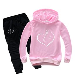 horses children clothing UK - DLF 2-16Y Kids Clothes 2019 Teen Girls Clothing Set Cartoon Horse Print Hoodies Pants 2pcs Set Sport Suits Children Fall Outfits T200707