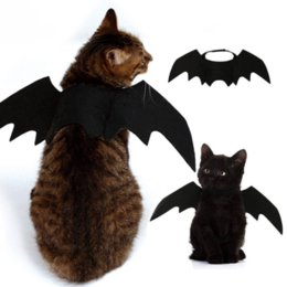 halloween costume wings Canada - Cute Halloween Cat Costume Small Pet Cat Bat Wings Halloween Wings Accessories 2019 Decorations for kids animal