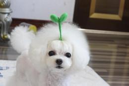 $enCountryForm.capitalKeyWord NZ - 2019 Pet Hairpin dog bowknot glitter powder decorative headdress hairdressing accessories hairpin Dog hair grooming Cat hair bows 20pcs lot