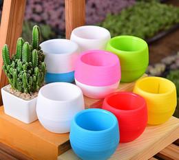 Fiber Pots Australia - 2019 Hot sales Korean succulents small flower mini stone pill pots Rainbow pots pp resin plastic lazy pots