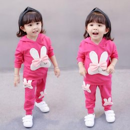 Cartoon Rabbit Hoodies Australia - Spring Autumn Baby Clothing Cartoon Rabbit Children Hoodies Pants 2Pcs Set Toddler Cotton Sets Kids Outfits Infant Girls Clothes