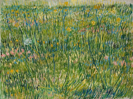 oil paint grass 2019 - Vincent Van Gogh Patch of grass Wall Art Home Decor Handpainted &HD Print Oil Painting On Canvas Wall Art Canvas Picture