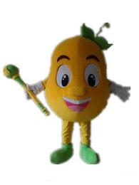 $enCountryForm.capitalKeyWord Australia - 2019 Discount factory sale an orange melon mascot costume with big eyes for adult to wear