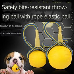 pet toy wholesale Canada - Toy training bite-resistant elastic rubber with rope chew pets cats toys large lovely Dog golden hair bite foam ball Interactive Favourite