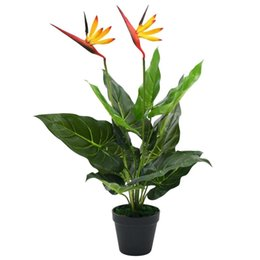 artificial plants for green walls NZ - Artificial Strelitzia Reginae Plant Bird Of Paradise 66 Cm Wall Stickers