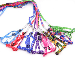 $enCountryForm.capitalKeyWord Australia - Multi-color Length 120cm New Nylon Pet dog cat Leash Lead Collar puppy Harness Rope for Small dog