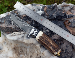 $enCountryForm.capitalKeyWord Australia - chasing antlers Damascus steel straight knife, collecting gifts outdoor camping multi-purpose knife
