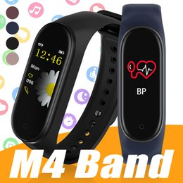 Fitbit Watch For Kids NZ | Buy New Fitbit Watch For Kids Online from