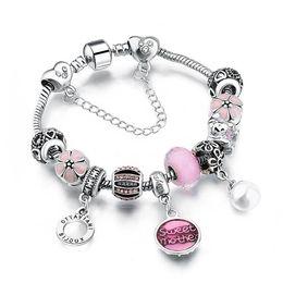 TibeTan snake charms online shopping - Nlm99 European Style Authentic Tibetan Silver PINK Crystal Charm Bracelets for Women Original DIY Beads Jewelry AA65