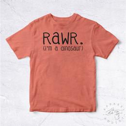 859ae0b09 NEW Tee Shirt Rawr I'm A Dinosaur BIO Dinosaure Joke Jurassic Park Fun T-Rex  MehFunny free shipping Unisex Casual Tshirt
