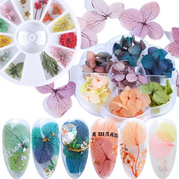 dried flowers for nails UK - 1 Wheel Dried Flower 3D Nail Art Decoration Gradient Natural Flowers Sticker for UV Gel Polish Manicure Accessories Tip LY1524-1