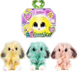 Wholesale Ins hot scruff a luvs blossom bunnies mystery rescue pet plush toy for kids children dog cat rabbit