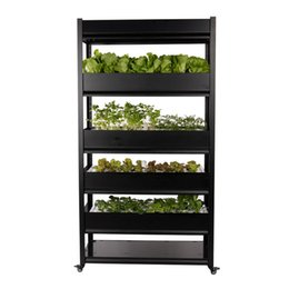 grow boxes UK - smart hydroponic growing systems indoor for vegetables lettuce hydroponic greenhouse systems hydroponic grow box grow cabinet grow