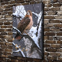 eagle decor UK - Lady Hawk Eagle Animals,Home Decor HD Printed Modern Art Painting on Canvas (Unframed Framed)