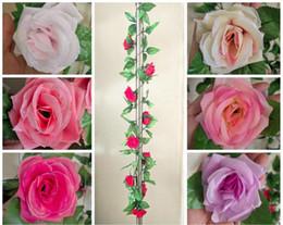$enCountryForm.capitalKeyWord Australia - 2.5 Meters Long - 2 Set Silk Rose Vine Hanging Wall Plants for Wedding or Home Decor - Red, Pink, Purple, Coral