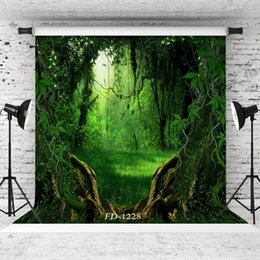 $enCountryForm.capitalKeyWord Australia - forbidden forest outlet Vinyl portrait photography background for child baby shower portrait backdrop photo studio photocall