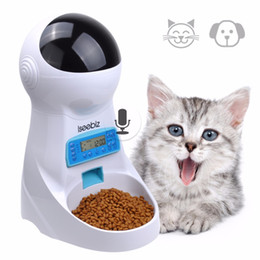 plastic lcd screen NZ - 3L Automatic Pet Food Feeder With Voice Recording Pets food Bowl For Medium Small Dog Cat LCD Screen Dispensers 4 times One Day