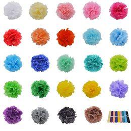"$enCountryForm.capitalKeyWord Australia - Multicolor 4"" 6"" 8"" 10"" 12"" 5pcs Paper Flowers Ball Wedding Home Birthday Party Car Decoration Tissue Paper Pom Poms Lantern"