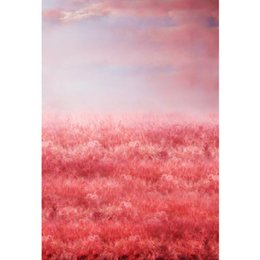 wedding backdrops props 2021 - Beautiful Pink Reed Backdrop for Wedding Photography Fancy Clouds Newborn Baby Shower Prop Vinyl Kids Photo Studio Backg