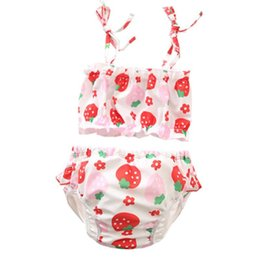 Swimwear Infant Australia - New Infant flowers dog designer baby boy girl kids two pieces Bikini swimwear summer Girl swimsuit Beach Bikini sets fast shipping