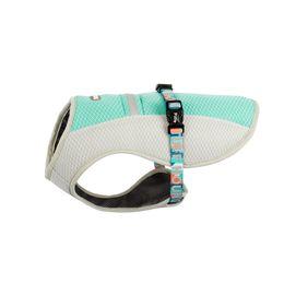 $enCountryForm.capitalKeyWord Australia - Summer Dog Cooling Vest Clothes Dog Cooling Harness For Dogs Adjustable Pet Mesh Reflective Vest Harnesses Quick Release Hot