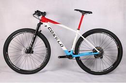 $enCountryForm.capitalKeyWord Australia - 2019 Costelo SOLO 2 carbon complete Mountain Mtb bicycle bike 29er Thru axle carbon frame wheels with original groups