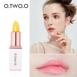 $enCountryForm.capitalKeyWord Australia - Beauty Bright Aloe Crystal Jelly Lipstick Magic Temperature Change Color Lip Gloss Makeup Set maquiagem profissional completa