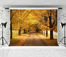 Discount backdrop background for photography forest - Dream 7x5ft Autumn Yellow Tree Photography Backdrop Forest Scenery Photo Background for Photographer Portrait Shoot Prop