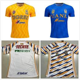 Mexico Soccer Kit White Australia - new 2018 2019 Tigres UANL soccer  jerseys thai quality Men d40c2f326