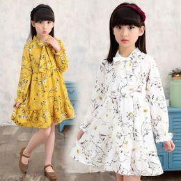 $enCountryForm.capitalKeyWord Australia - 2019 girls spring new Korean long-sleeved spring and autumn clothes in the big children's children's skirt floral dress tide