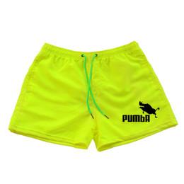40b815bb3b New Fashion Men Pumba Sporting Beaching Shorts Trousers Bodybuilding  Sweatpants Fitness Short Jogger Casual Gyms Men Shorts