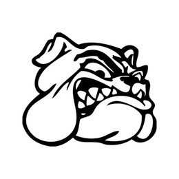 $enCountryForm.capitalKeyWord UK - Car Sticker Angry Dog Face Dog Violent Vinyl Car Packaging Accessories Product Decoration