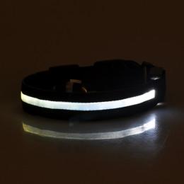 $enCountryForm.capitalKeyWord Australia - 2019 LED Nylon Pet Dog Collar Night Safety LED Light Flashing Glow in the Dark Small Dog Pet Leash Dog Collar Flashing Safety Collar 55DF3
