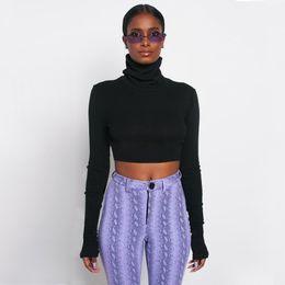 $enCountryForm.capitalKeyWord Australia - Hot style high-necked long-sleeved bottom shirt for women spring 2019 new slim short T-shirt wholesale women #13