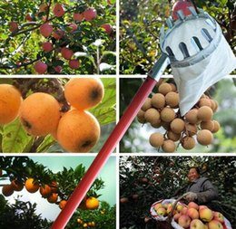 Metal Pear NZ - Wholesale Garden Pruning Fruit Picker Gardening Apples Pear Peach Picking Tool Metal Creatively Long Length Collection Gathering Tools