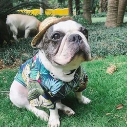 $enCountryForm.capitalKeyWord Australia - Short Sleeve T shirts for dogs Cotton Material Summer Dog Shirts Beach and Hawaii Style Pet Vests